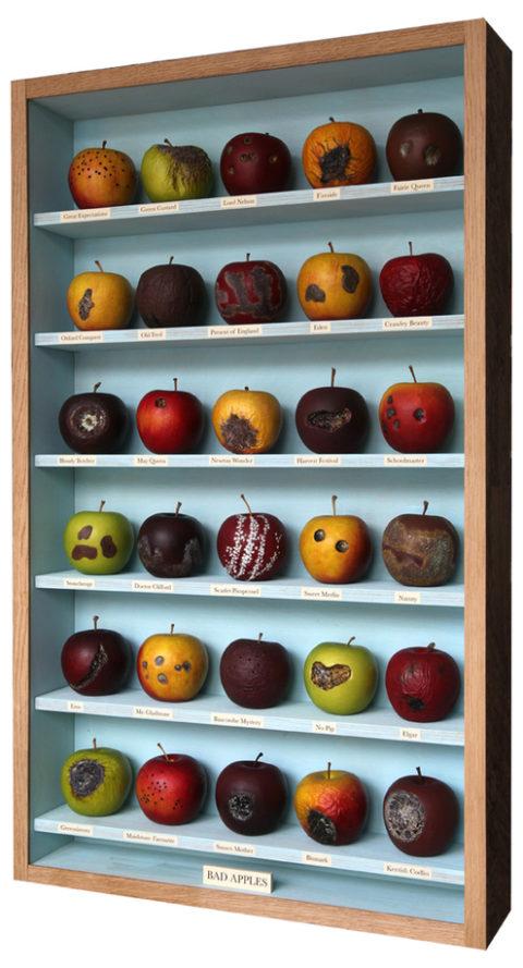 box_bad_apples.jpg
