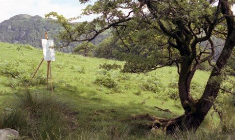 hawthornlandscape_72.jpg