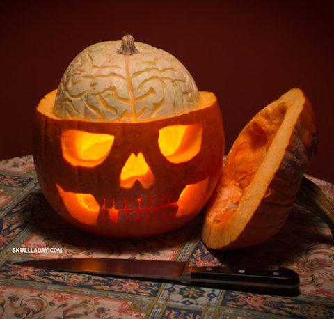 pumpkinanatomy2.jpg