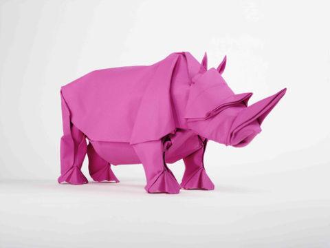 rhino_magenta.jpg