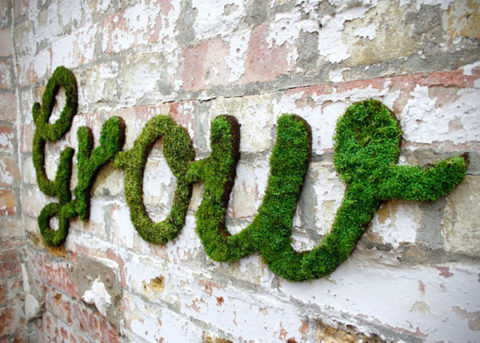 Moss Graffiti by Anna Garforth