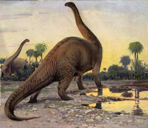 Batuman-brontosaurus-690_large.jpg