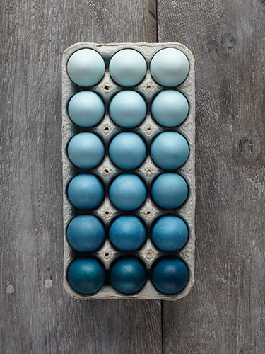 551dc0942f7c4-crafts-ombre-eggs-0414-lgn_large.jpg