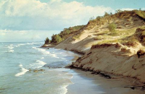 fatherly-indiana-dunes-national-park_large.jpg