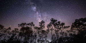 Don't Miss The Meteor Shower of The Decade This Week!
