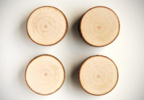 treebranchmagnetsdiy-5.jpg