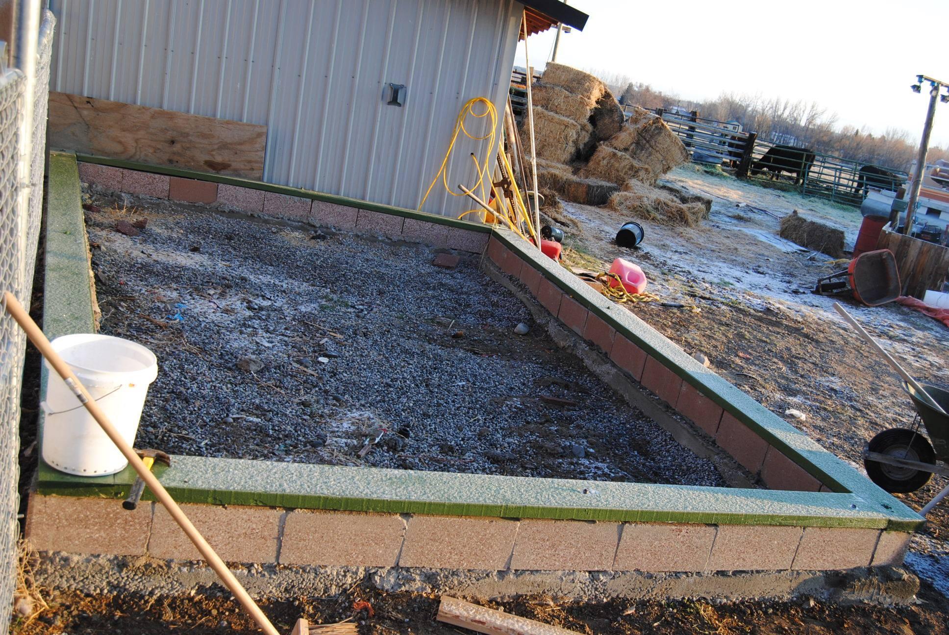 greenhouse garden plants starter seedlings