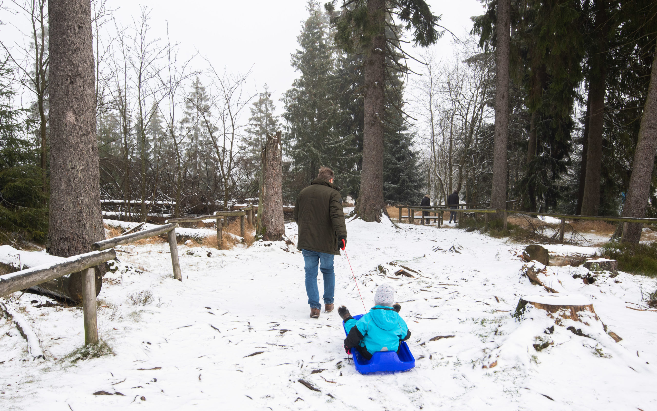 A father pulls his child on a sledge on a hiking trail