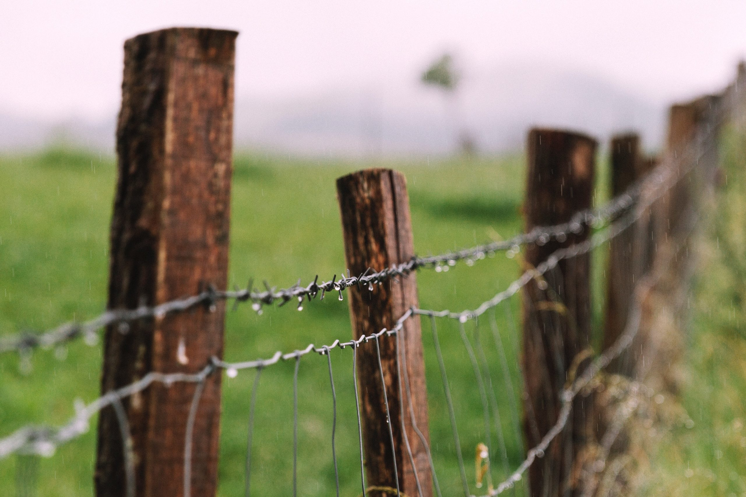 wooden fence posts with barbed wire