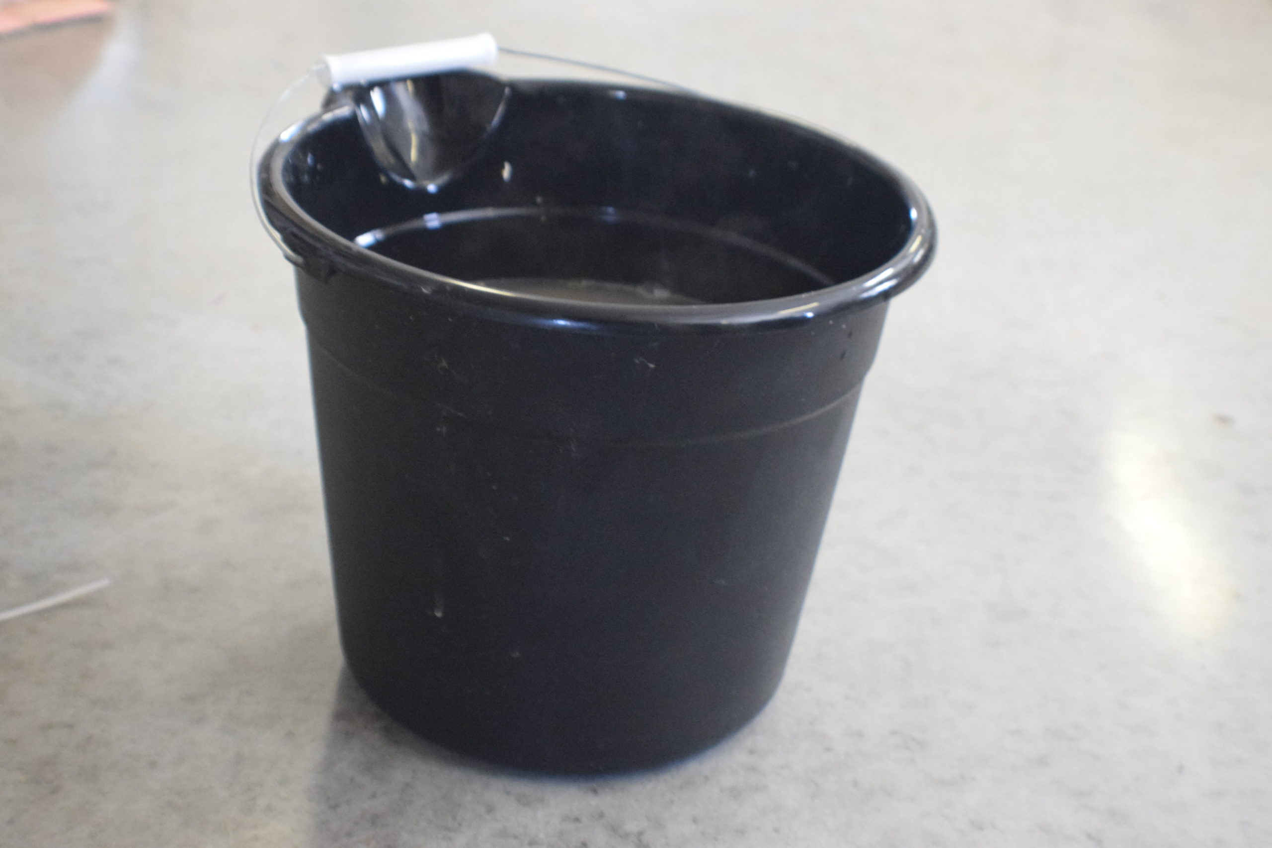 Black bucket of soapy water on a concrete floor