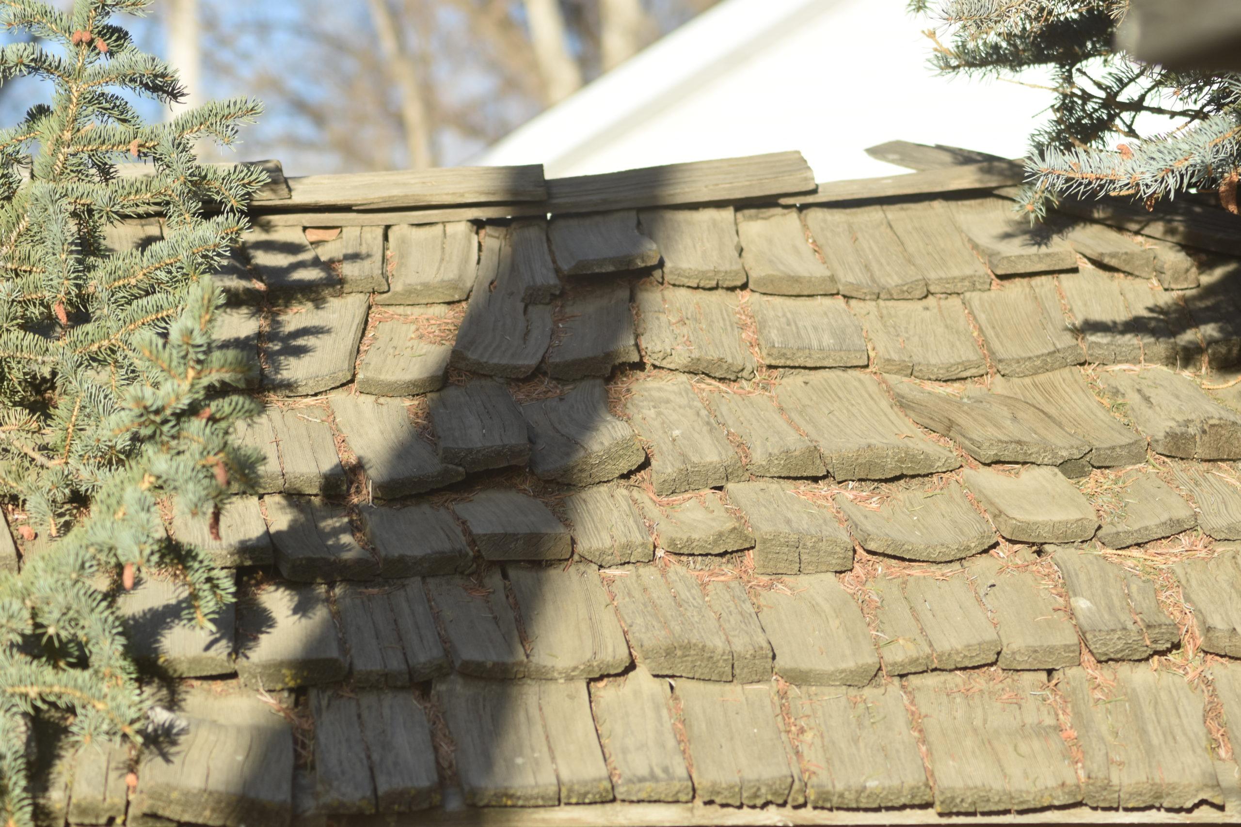 metal roof shakes