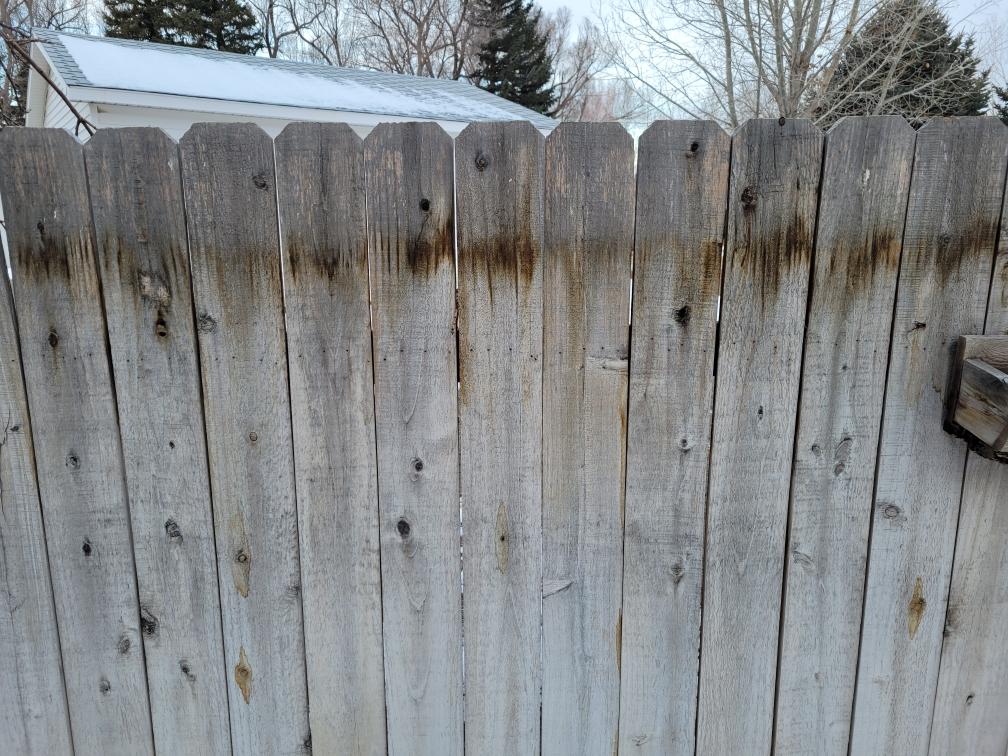 Cedar fence renew
