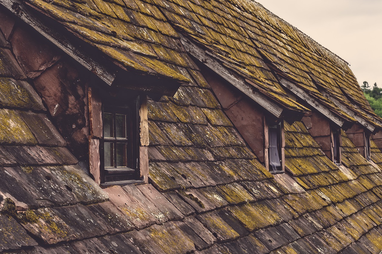 Roof with damaged tiles