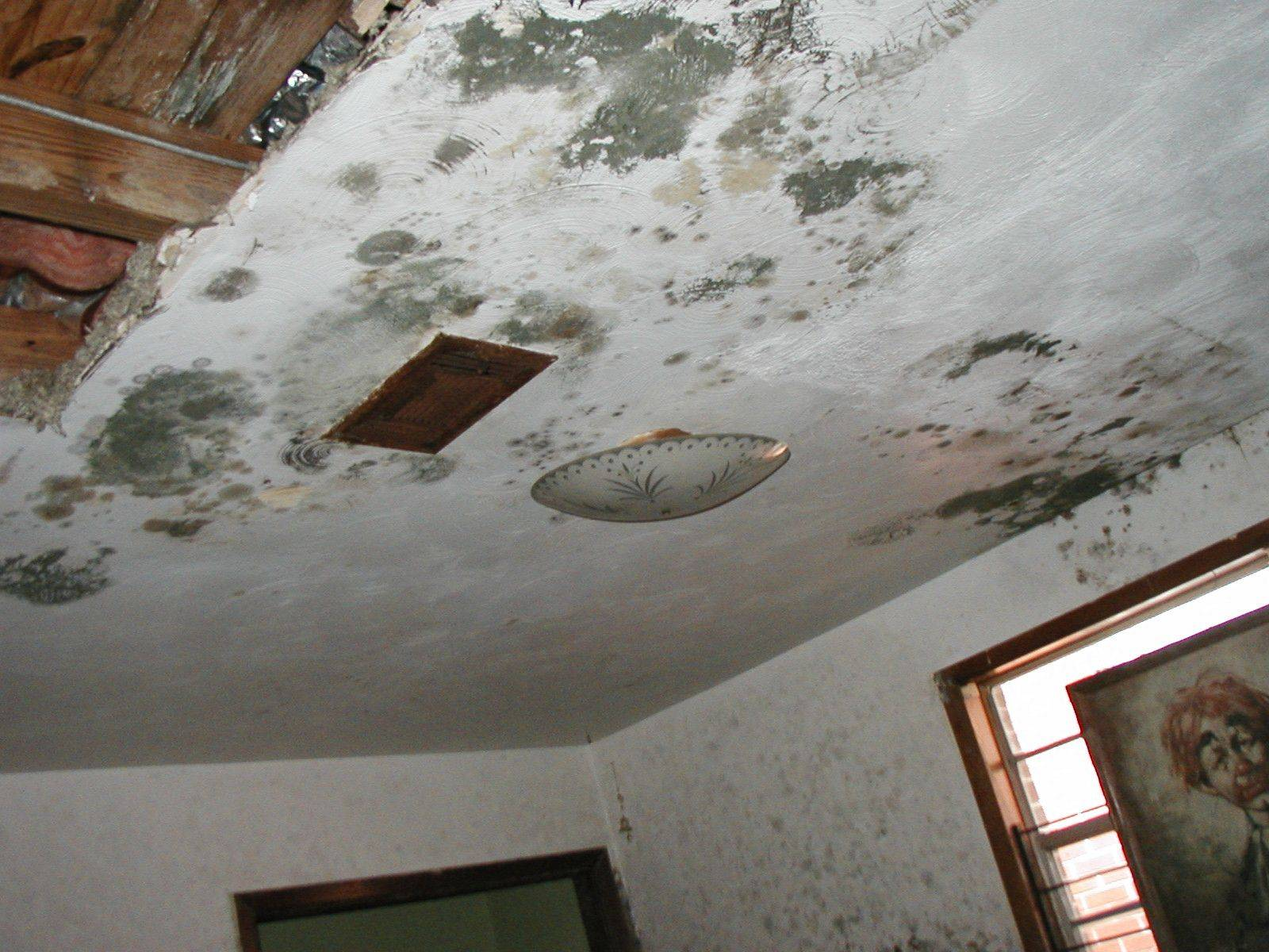 Damaged ceiling with water stains