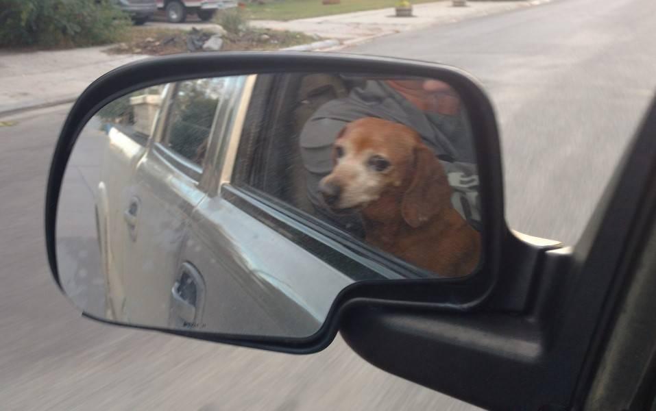 trailer backup mirror